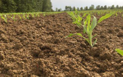 """CAMBIAMENTI CLIMATICI E AGRICOLTURA DIGITALE, CONFAI MANTOVA: """"NIENTE FUTURO SENZA LE AZIENDE AGROMECCANICHE"""""""