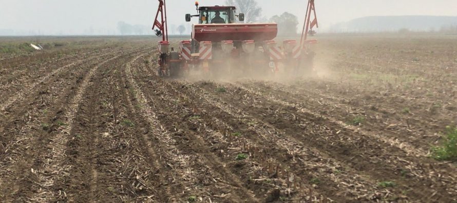 STRIP-TILL E DOSE VARIABILE DI SEME E CONCIME, LA STRATEGIA VINCENTE PER IL MAIS